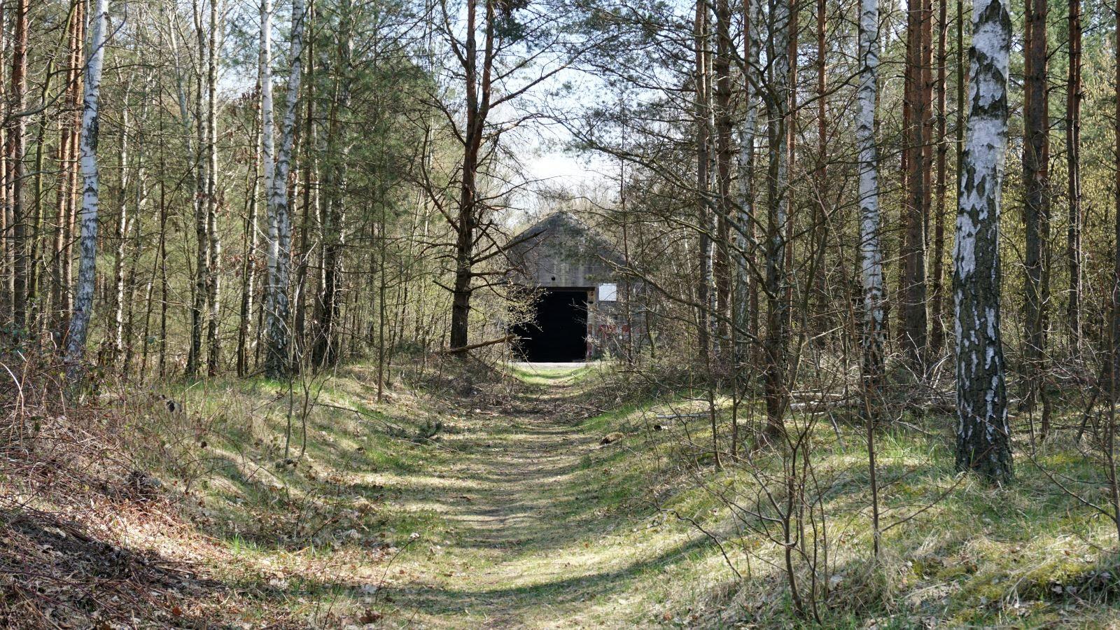 schron kolejowy w jeleniu mierzy 350 m i jest ukryty w lesie