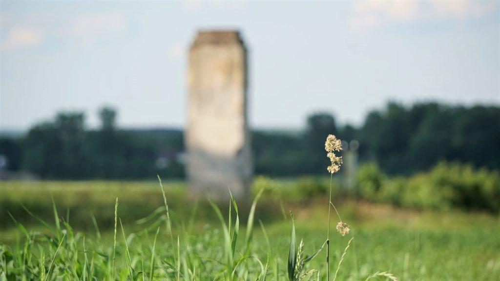 Pomnik Legionistów Puławskich wPakosławiu wśród łąk