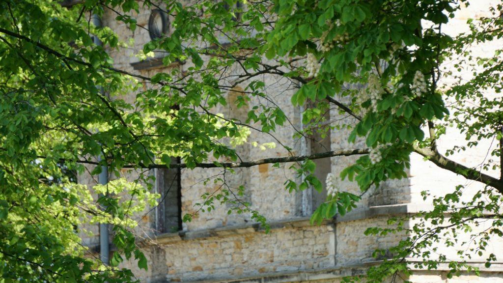 pałac Schoenberga wWąchocku skryty zadrzewami